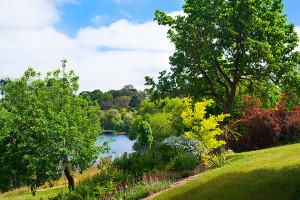 The Coach House - Lake Frontage Garden I