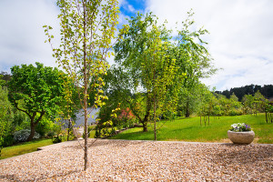 The Coach House - Lake Frontage Garden III